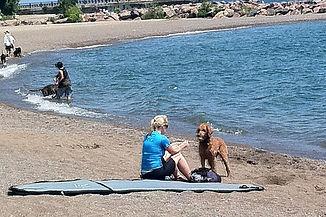 Silverbirch Dog Park.jpg