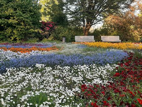 Frühling im Kurpark Bad Bevensen, Mai 2020