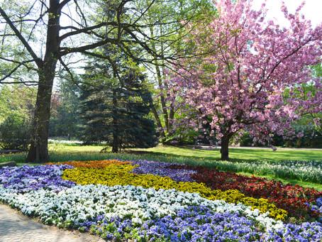 Frühling in Bad Bevensen