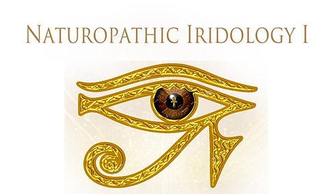 iridology title pic.jpg