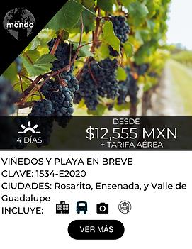 VIÑEDOS_Y_PLAYA_EN_BREVE.png