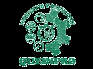 LOGO QUEINPRO.png