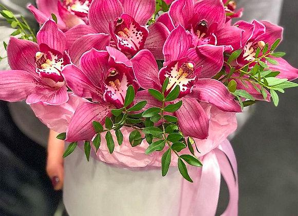 Шляпная коробка с орхидеями (цимбидиум)