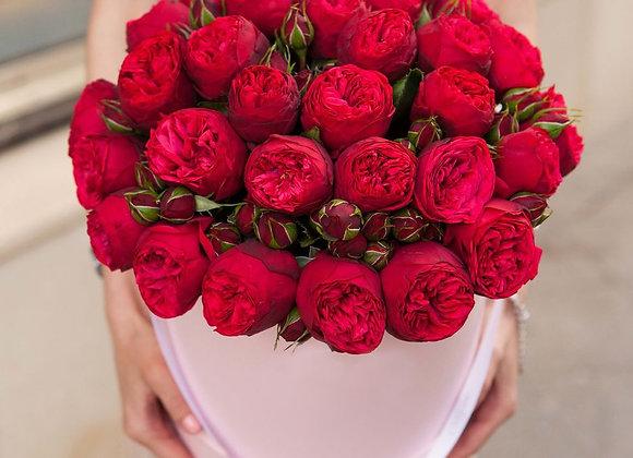 Пионовидные розы Ред Пиано в шляпной коробке
