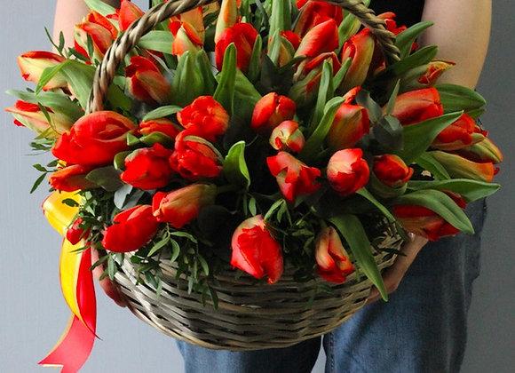 Корзина обычных тюльпанов