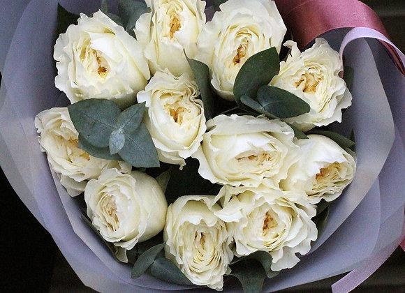 Пионовидные розы Пейшенс