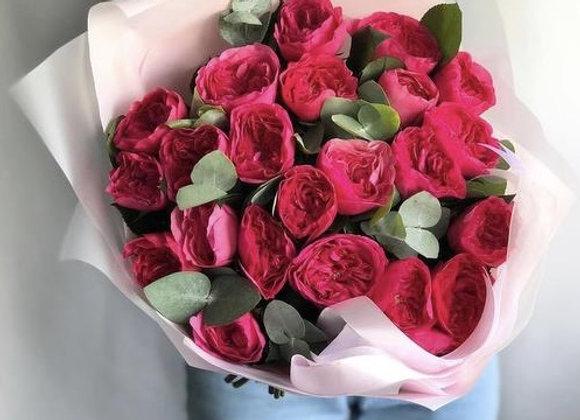 Пионовидные розы Баронесса