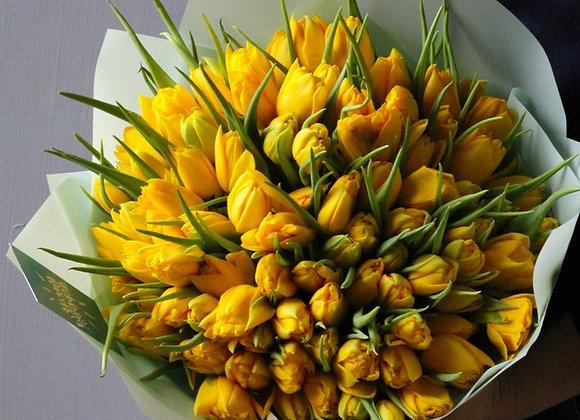 Букет обычных тюльпанов