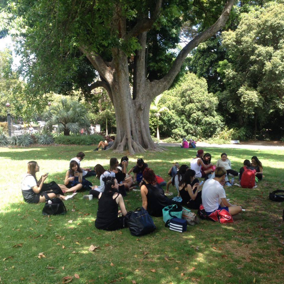 Botanic Garden II