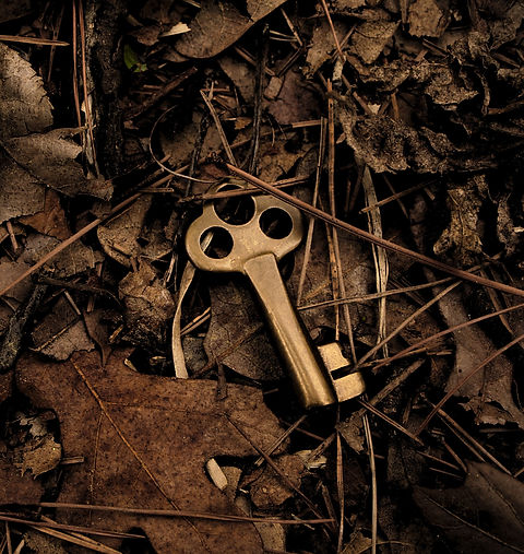 An%20old%20brass%20key%20dropped%20in%20the%20woods._edited.jpg