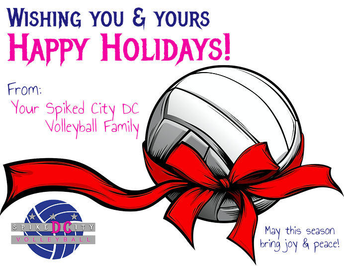 Happy Holidays! clean.png