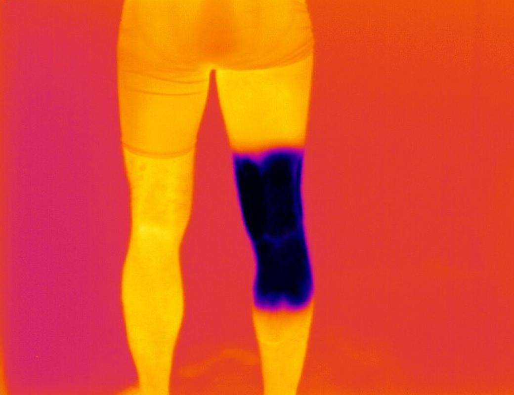 physiolab leg
