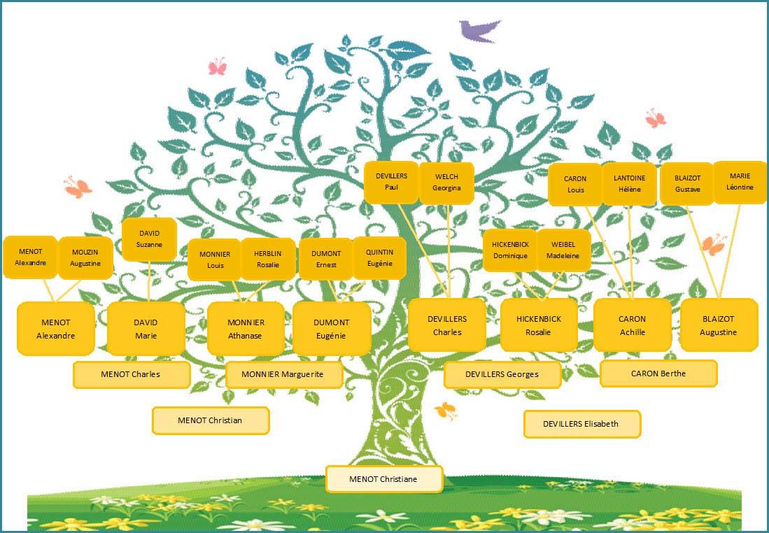 arbre géné.jpg