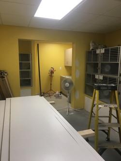 new cat kitchen:kennel