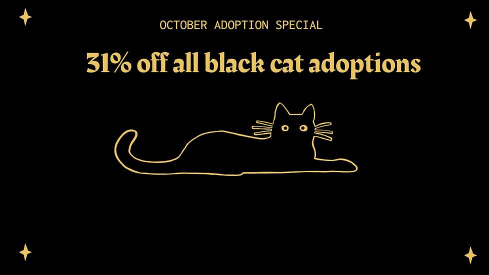 BLACK CAT ADOPTION.png