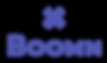 Logotipo_BoomnX_2020-01.png
