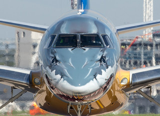 Embraer's E2 'Profit Hunter' woos BA Cityflyer