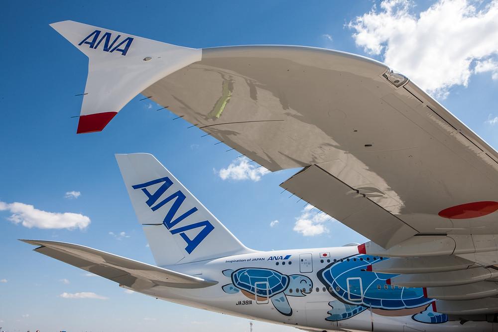 ANA A380 close up