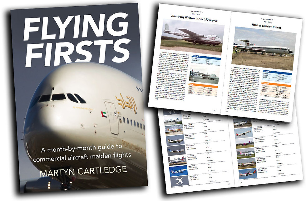 Flying-Firsts-Pages.jpg