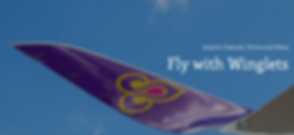 Screen Shot of flywinglets.png