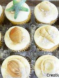 Adult 13 Seashells Birthday Cupcakes