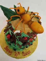 Animals 48 Bugs Birthday Cake
