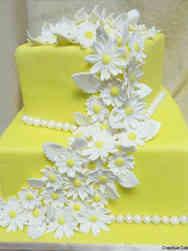 Floral 08 Happy Daisies Wedding Shower Cake