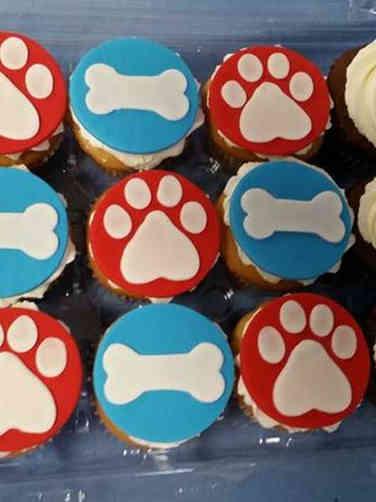 Kids 16 Paw Patrol Birthday Cupcakes