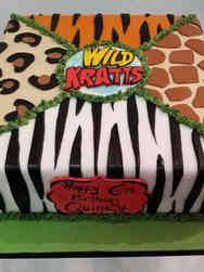 TV 36 Wild Kratts Birthday Cake