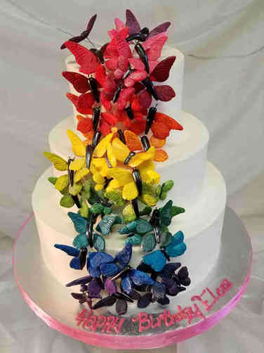 Feminine 49  Butterfly Rainbow Birthday Cake