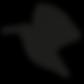 Kolibri_Icon.png