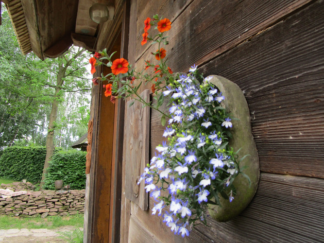 Bloemen detail deur