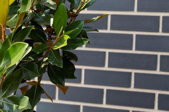 Green Bricks.jpg