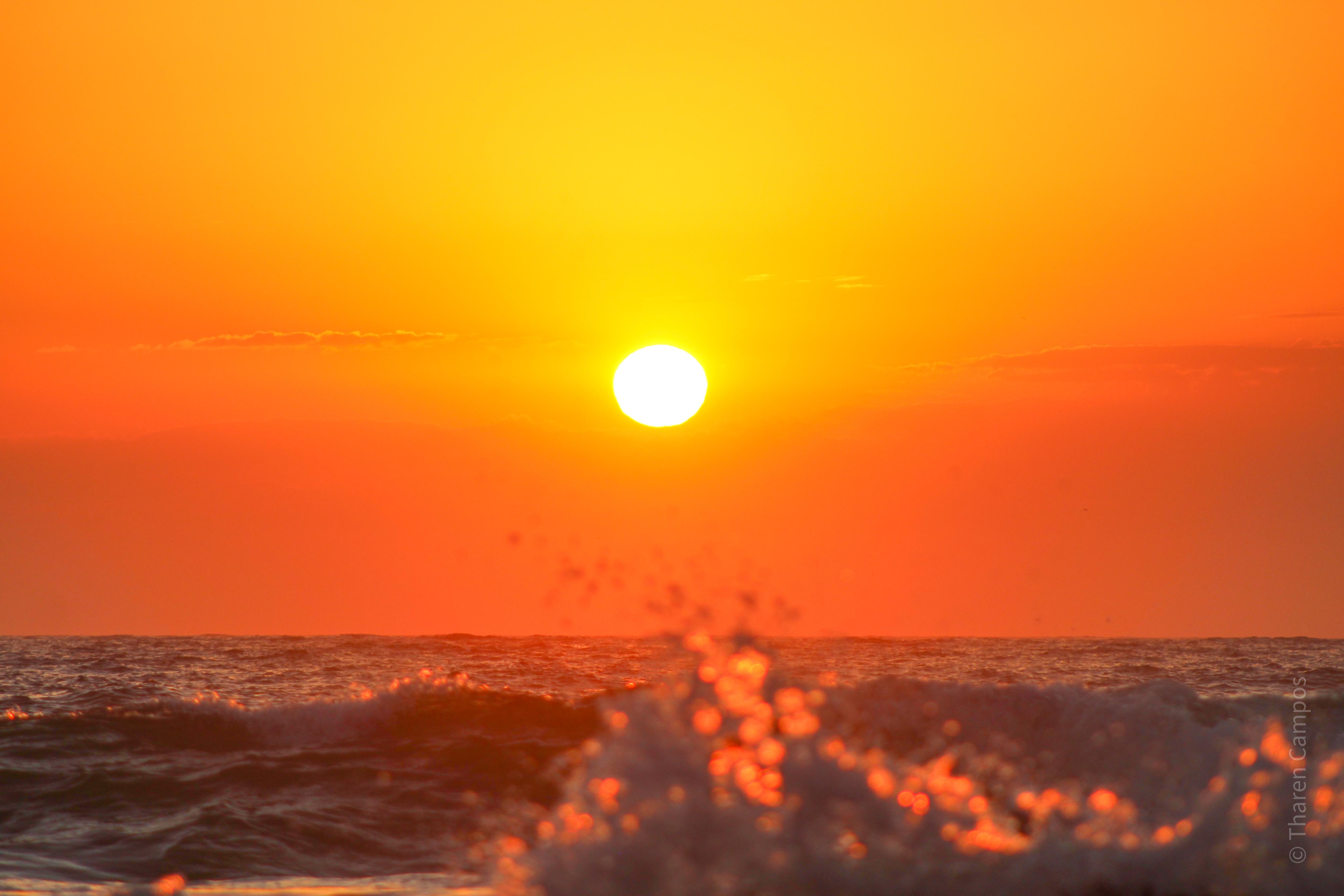 Nascer do sol - Praia do Rosa 5