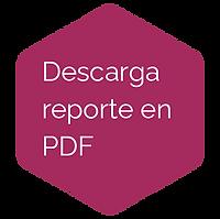 descarga-PDF.png