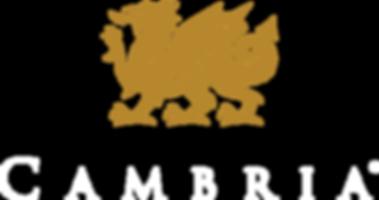cambria_V_REV_PMS125.png
