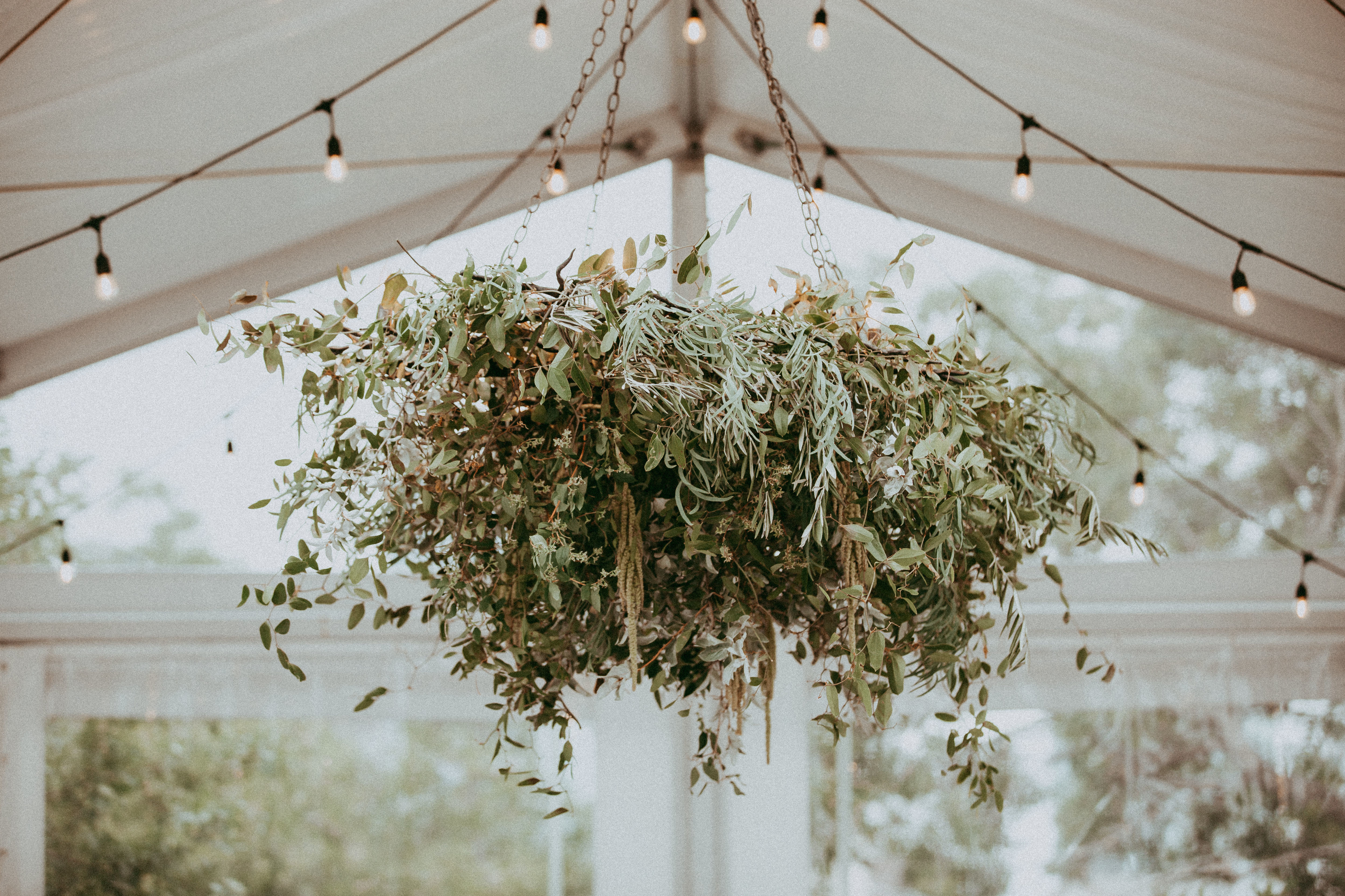 Foliage Chandelier at the Deane House