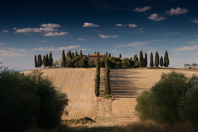 Tour Cover Photo - Under the Tuscan Sun.jpg