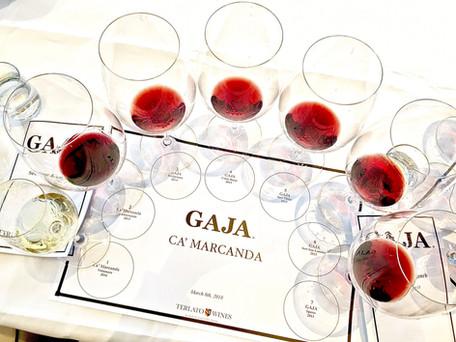 04 Gaja Wine.jpg