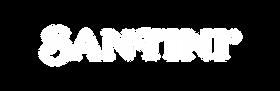 Santini_Website_Assets_Logo-21.png