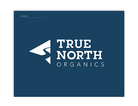 TrueNorth_StyleGuide_WEBSITE_logo copy 3