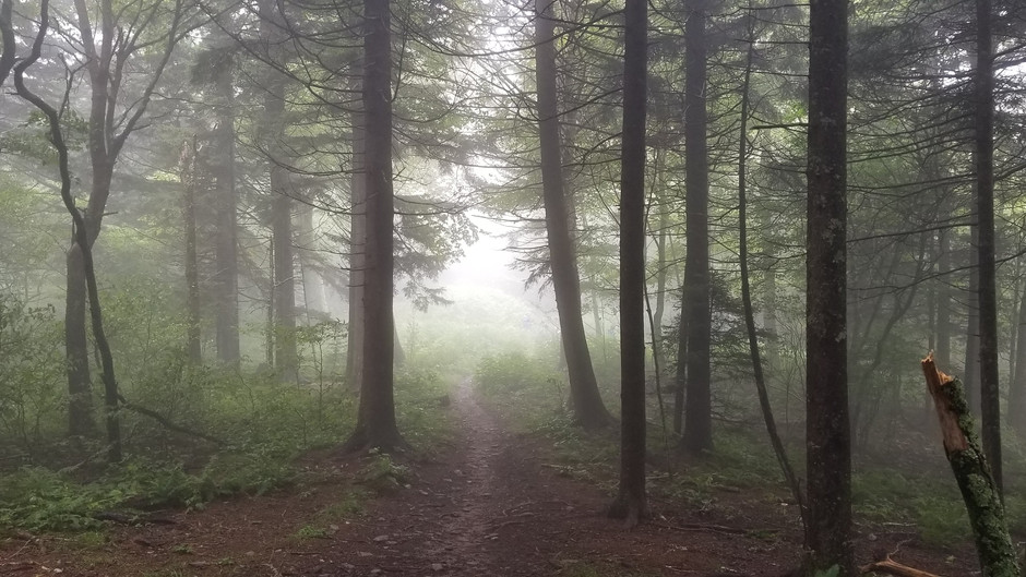 Going off the Grid - Great Smoky Mountains Backpacking Adventure