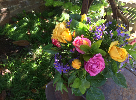 Welcome to Bude Blooms - Local Bude Florist