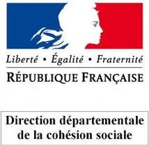 logo DDCS.jpg