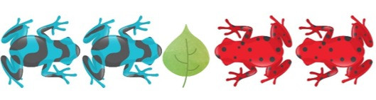 Two blue frogs facing two red frogs with an empty lily pad in the middle