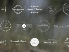 Wedding Titles 18849528 Free Download After Effects Project