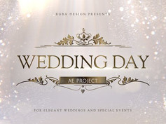 Wedding 23910729 Free Download After Effects Project
