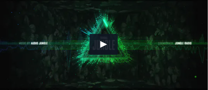 VIDEOHIVE AUDIO SPECTRUM 1