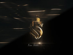 Elegant Gold Logo 30132720 Videohive - Free Download After Effects Template