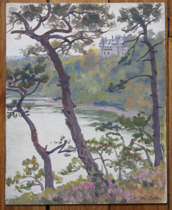 Bretagne -Château de la Roche Jagu